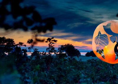 Rådgivning visuel identitet for Samsø Bær